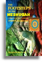 The Footsteps Of The Meshugah